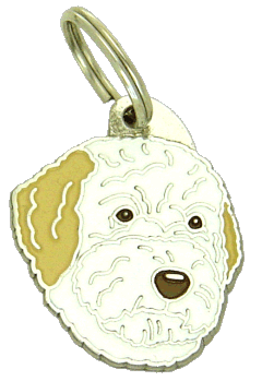 Lagotto romagnolo biało-pomarańczowy - pet ID tag, dog ID tags, pet tags, personalized pet tags MjavHov - engraved pet tags online