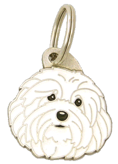 Hawańczyk biały - pet ID tag, dog ID tags, pet tags, personalized pet tags MjavHov - engraved pet tags online