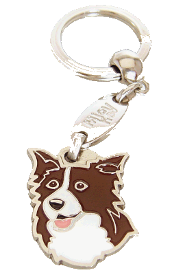 Border collie czekoladowo-biały - pet ID tag, dog ID tags, pet tags, personalized pet tags MjavHov - engraved pet tags online
