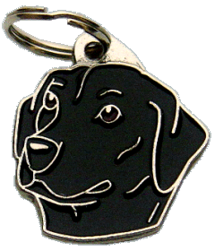 LABRADOR RETRIEVER ZWART