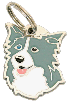 BORDER COLLIE BLÅ BLÅT/BRUNT ØJE - pet ID tag, dog ID tags, pet tags, personalized pet tags MjavHov - engraved pet tags online