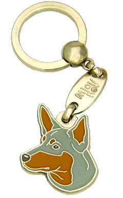 AUSTRALSK KELPIE BLÅ MED TAN - pet ID tag, dog ID tags, pet tags, personalized pet tags MjavHov - engraved pet tags online