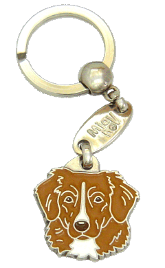 NOVA SCOTIA DUCK TOLLING RETRIEVER - pet ID tag, dog ID tags, pet tags, personalized pet tags MjavHov - engraved pet tags online
