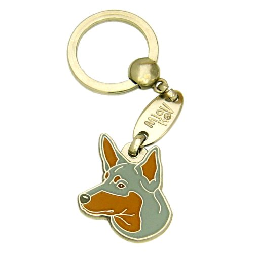 Custom personalized dog name tag AUSTRALIAN KELPIE BLUE & TAN
