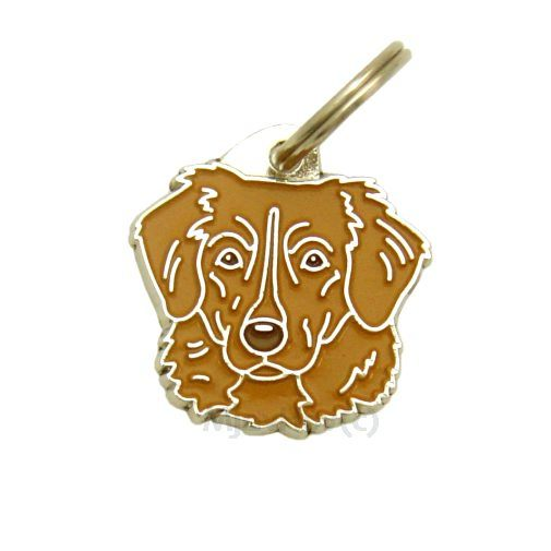Custom personalized dog name tag NOVA SCOTIA DUCK TOLLING RETRIEVER-TOLLER BROWN