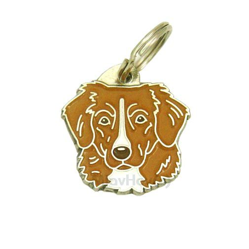 Custom personalized dog name tag NOVA SCOTIA DUCK TOLLING RETRIEVER-TOLLER
