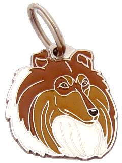 COLLIE SABLE