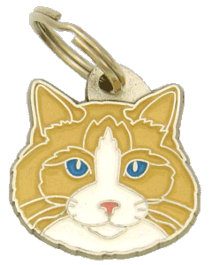 Ragdoll cat cream point bicolor - pet ID tag, dog ID tags, pet tags, personalized pet tags MjavHov - engraved pet tags online