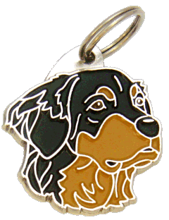 HOVAWART <br> (pet tag, engraving included)
