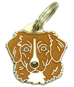 NOVA SCOTIA DUCK TOLLING RETRIEVER-TOLLER - pet ID tag, dog ID tags, pet tags, personalized pet tags MjavHov - engraved pet tags online