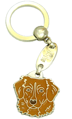 NOVA SCOTIA DUCK TOLLING RETRIEVER-TOLLER BROWN <br> (keyring, engraving included)