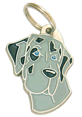 Dogue Alemão azul merle - pet ID tag, dog ID tags, pet tags, personalized pet tags MjavHov - engraved pet tags online
